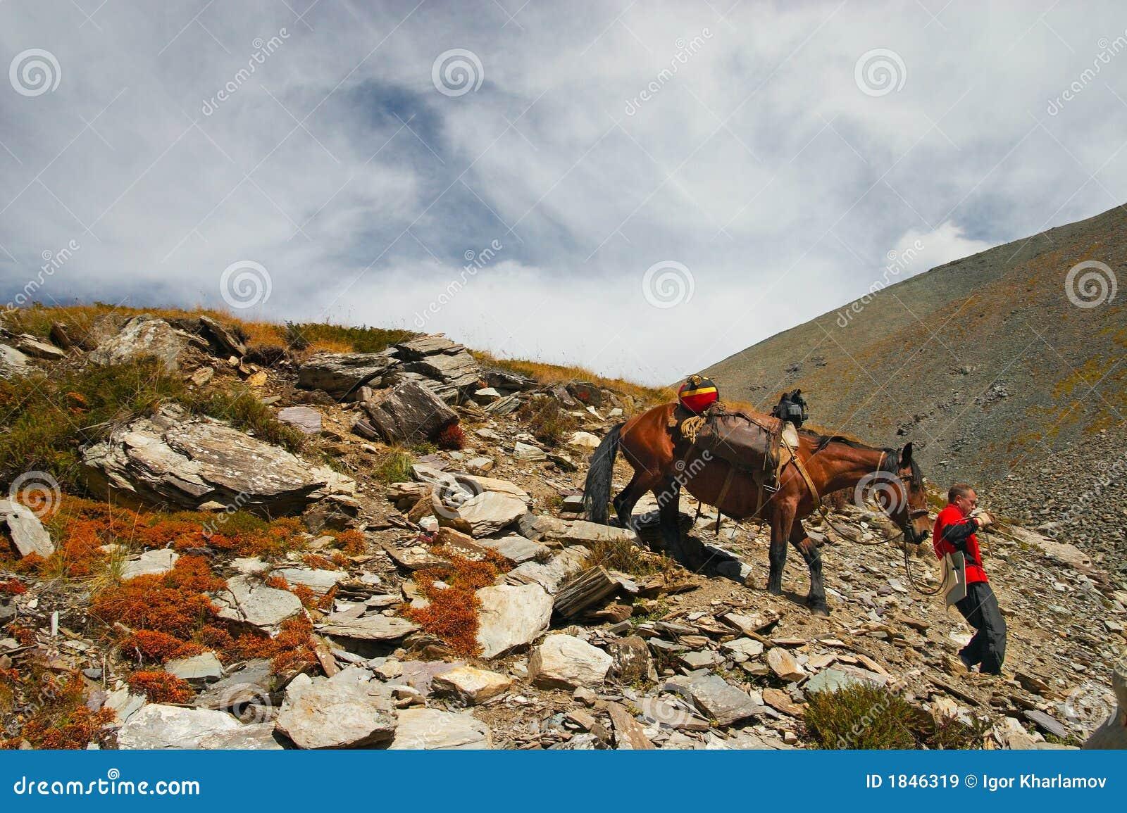 Hommes, cheval et montagnes.