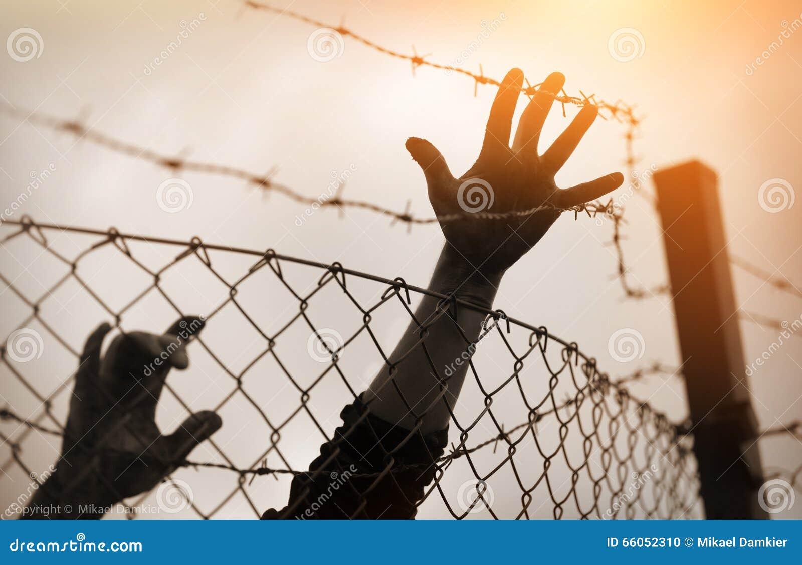 Hommes et barrière de réfugié