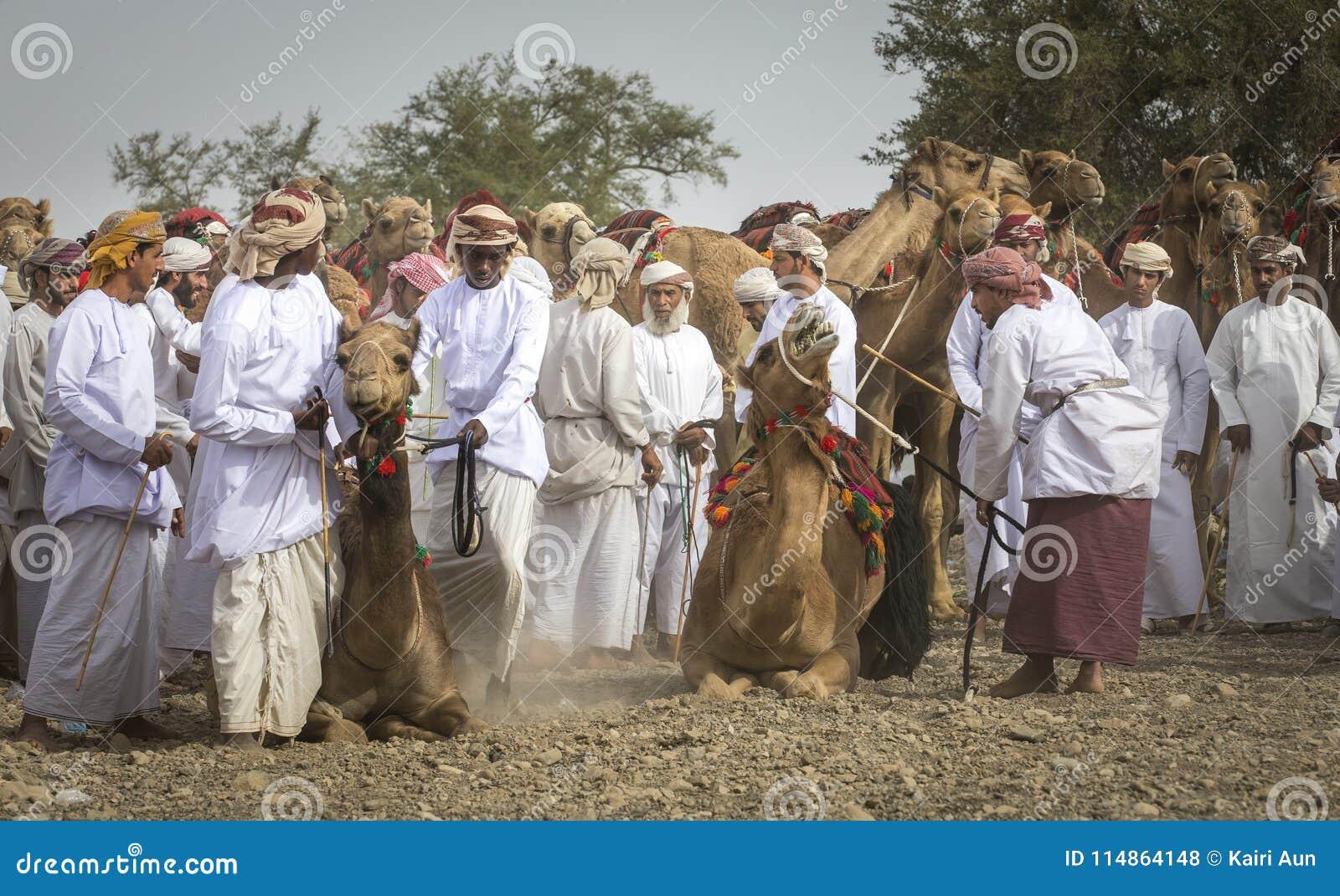 Hommes omanais étant prêts pour emballer leurs chameaux sur un pays poussiéreux