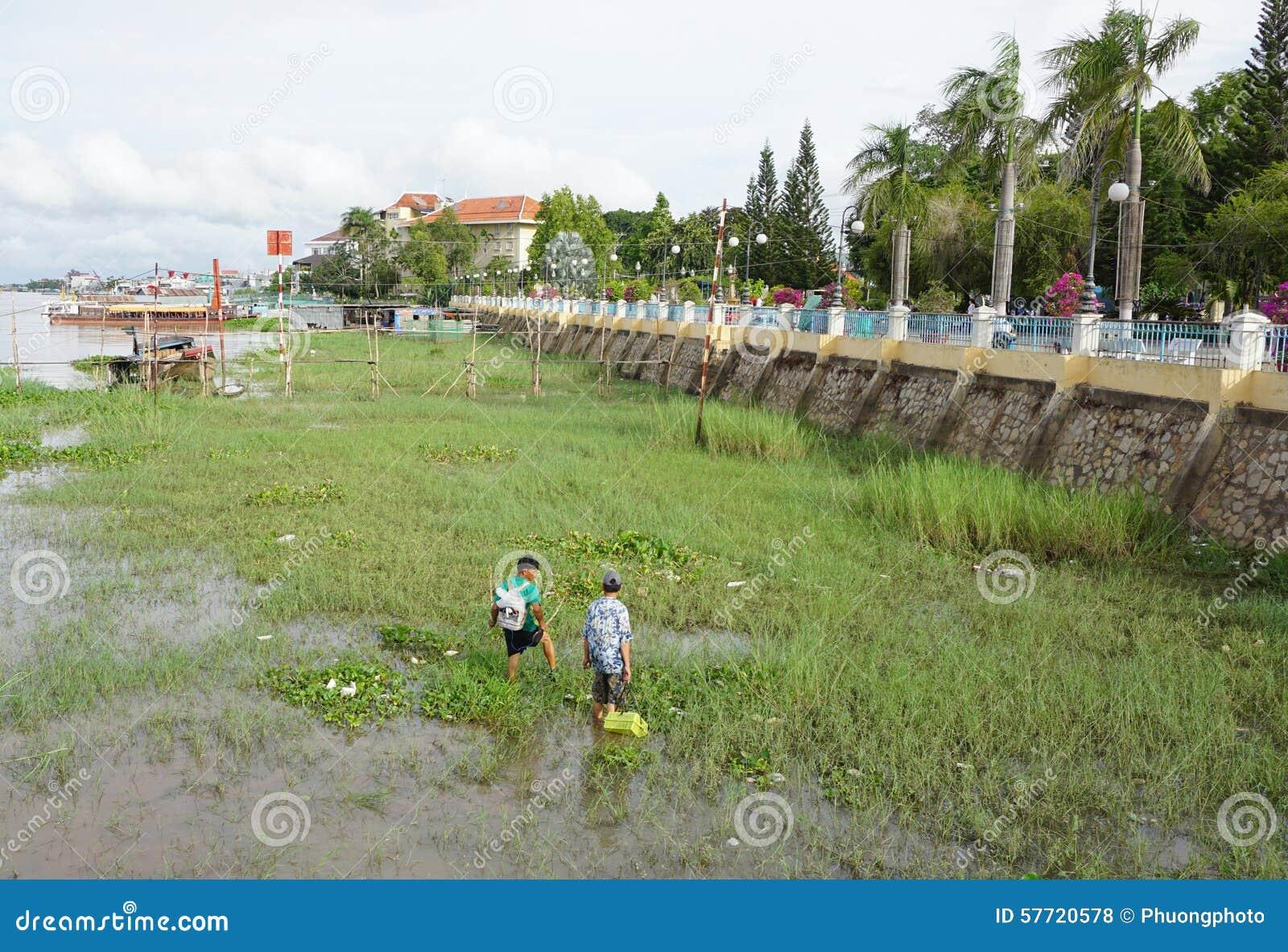 Hommes vietnamiens pêchant des poissons au début de la matinée