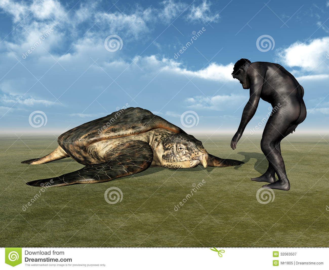evolution of the sea turtle This video is about the evolution of turtles this video is about the evolution of turtles skip navigation sign in the survival of the sea turtle - duration: 4:26 ted-ed 746,064 views the evolution of man - 2014 the history human evolution.