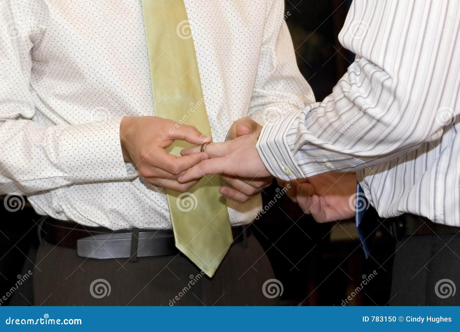 Homosexuelle Ehe stockfoto. Bild von nicht, partner