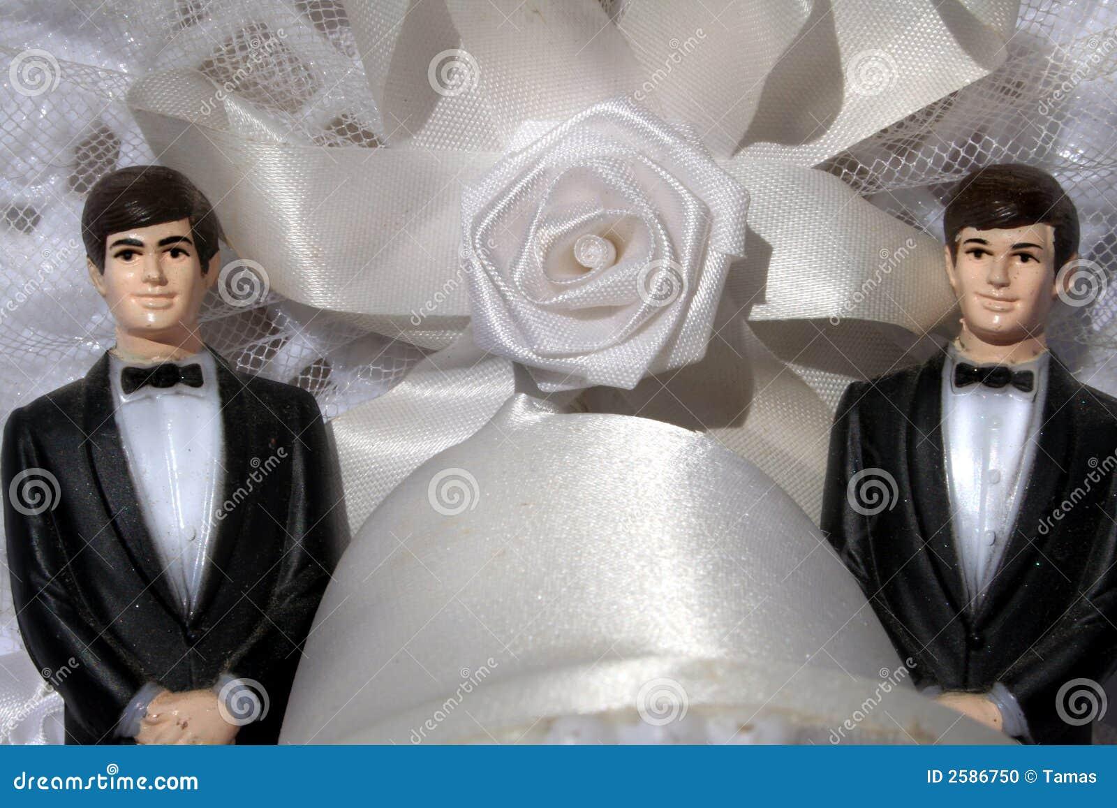 Homosexuelle Ehe Mit Zwei Bräutigamen Stockfoto - Bild von feier ...