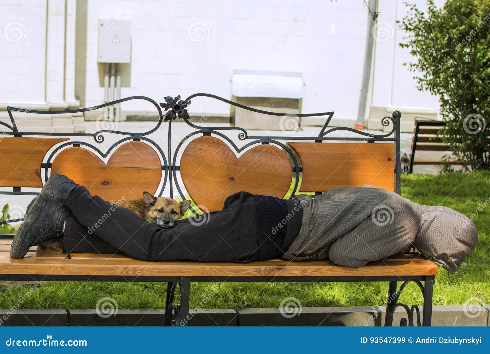 Hond en dronken eigenaar in slaap op de bank zonneschijn