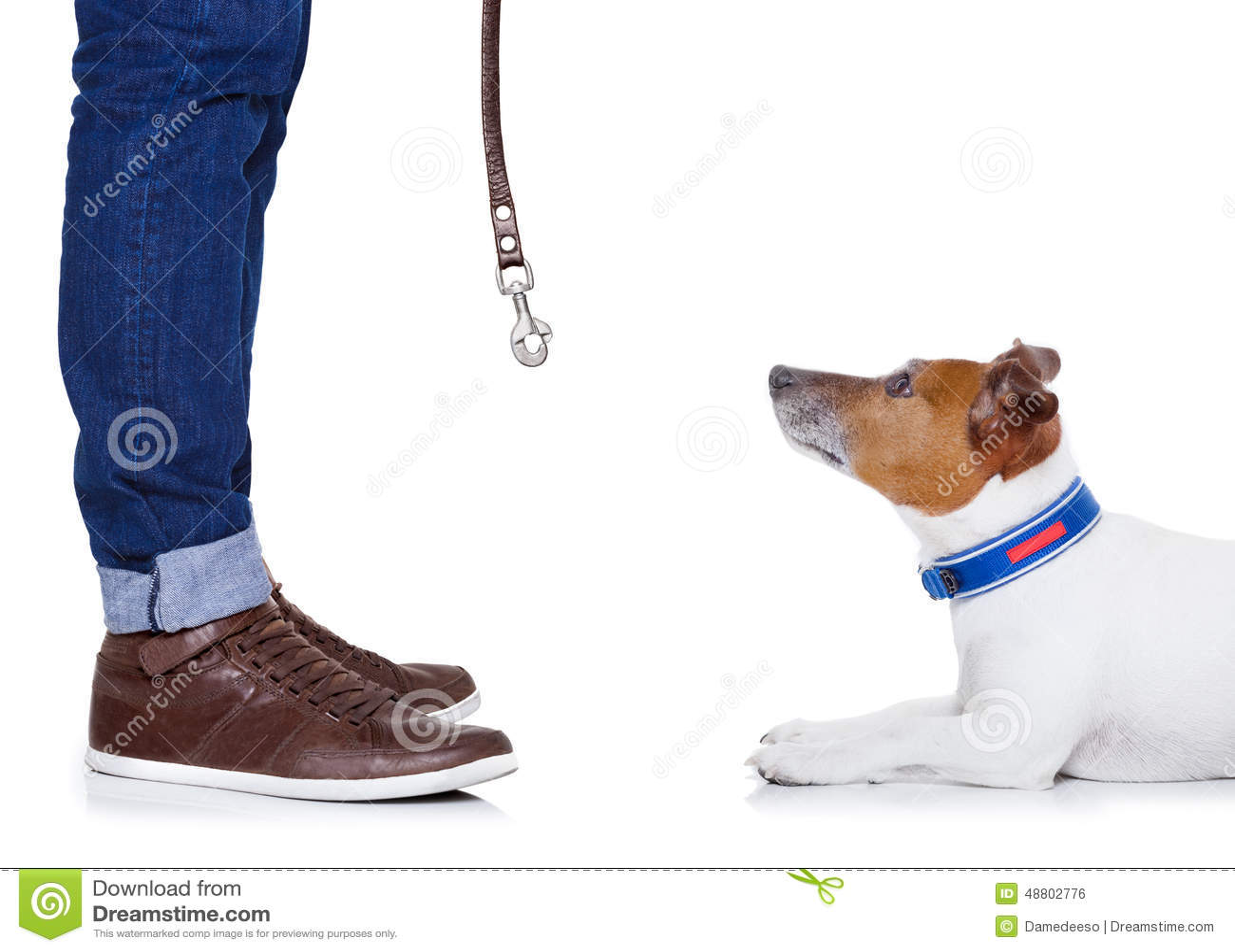Hond en eigenaar