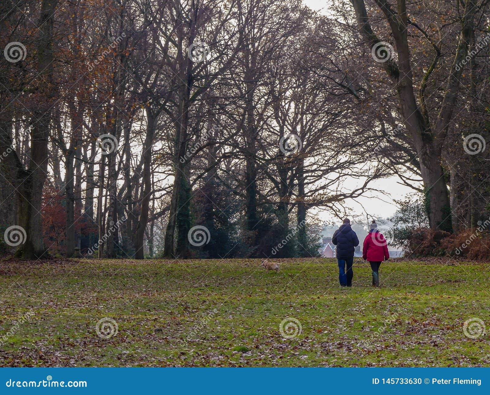Hond lopend paar op Chorleywood Gemeenschappelijk in de winter, Hertfordshire