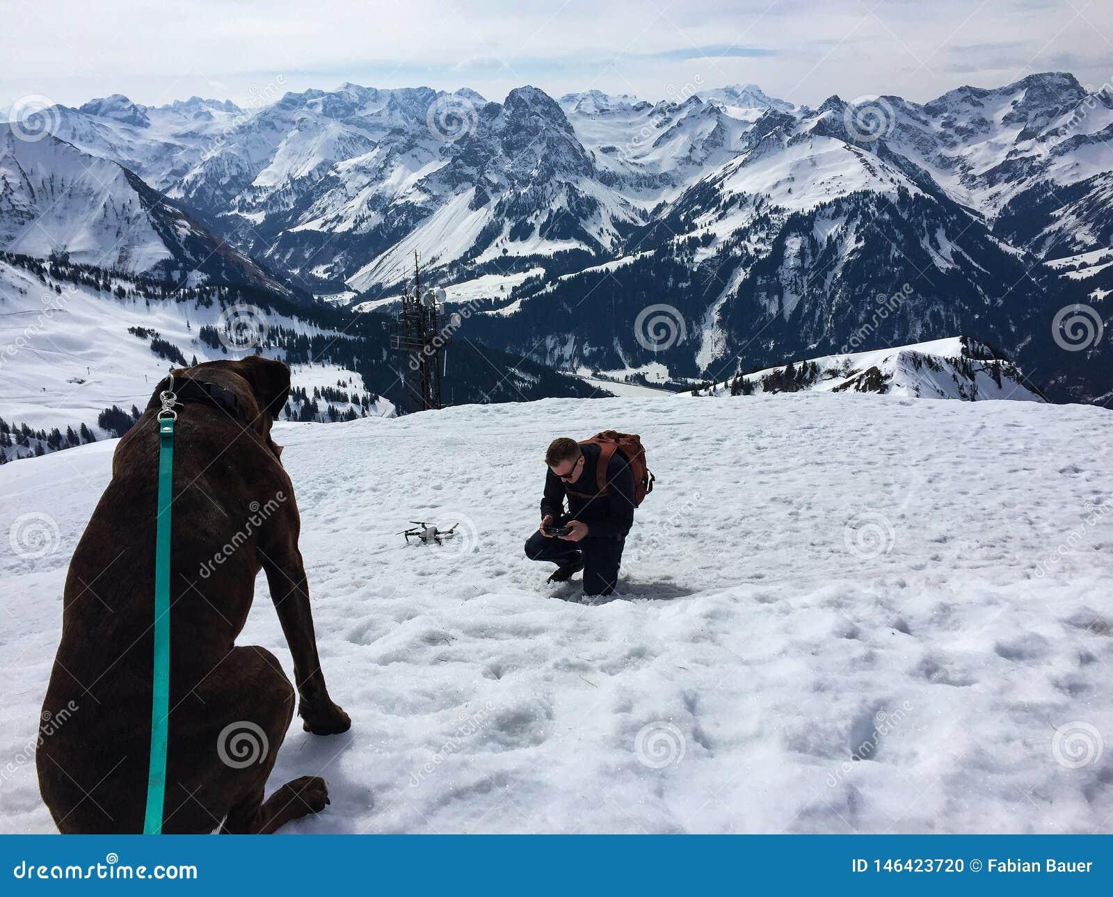 Hond op de bovenkant van een berg die bij een hommel staren proef