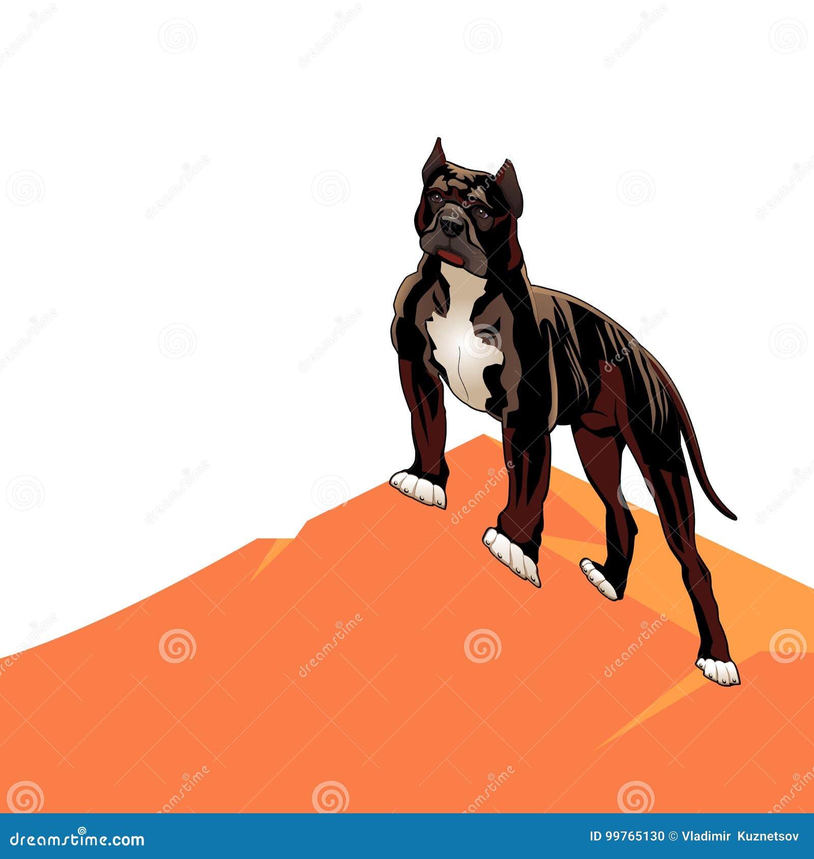 Hond raspitbull op een heuvel, beeldverhaal op een witte achtergrond