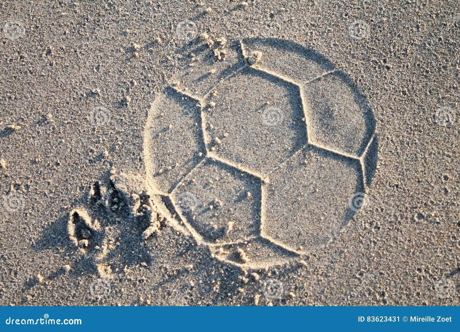 Hond speelvoetbal op strand