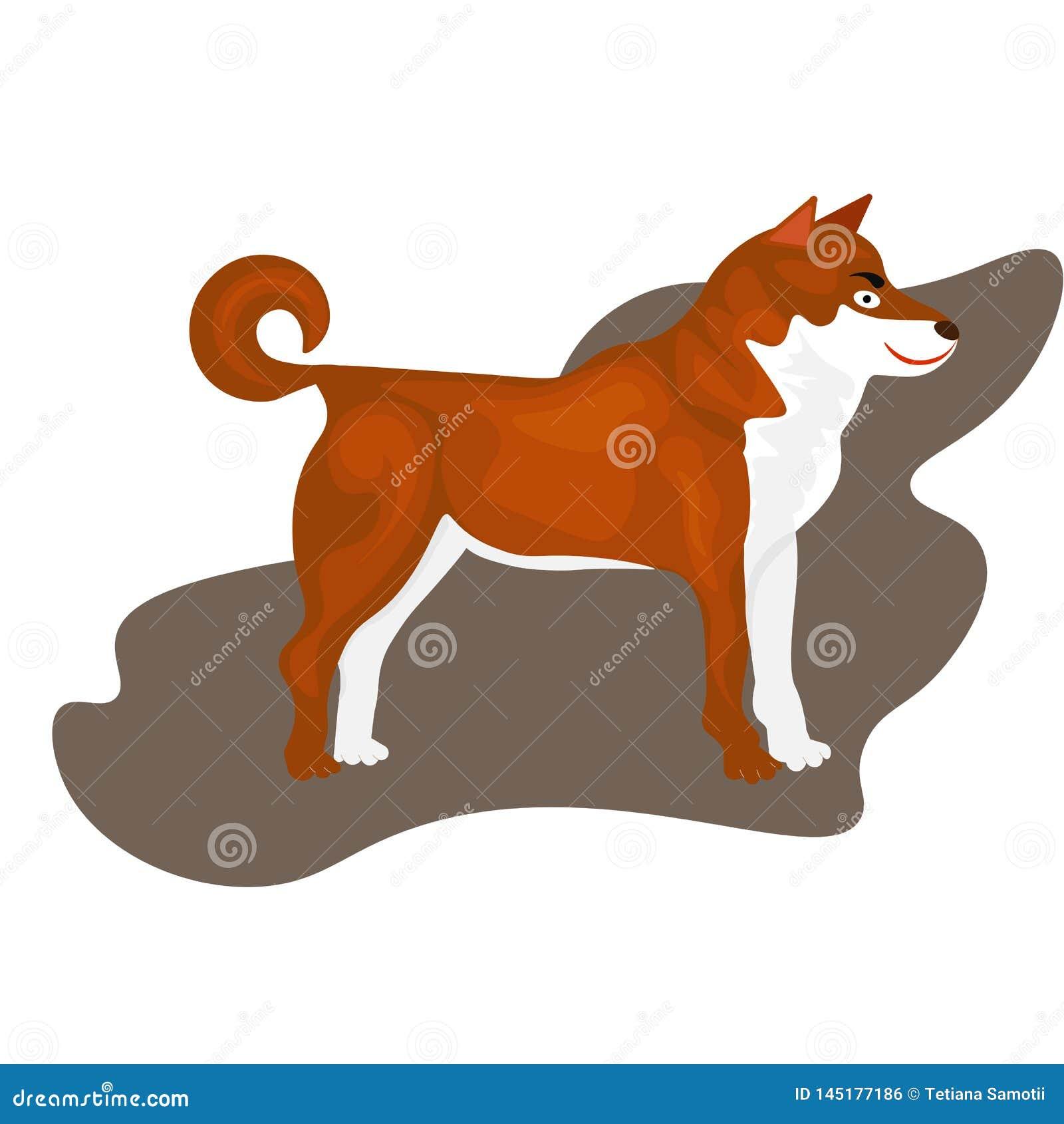 Honden van Web de Volwassen Siberische Husky Dogs Or Sibirsky Husky