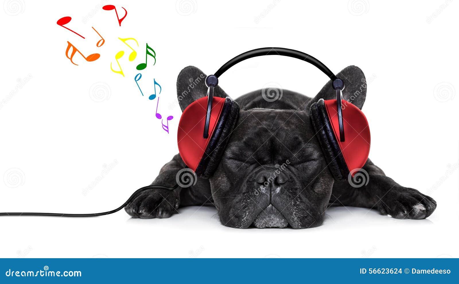 Hondmuziek