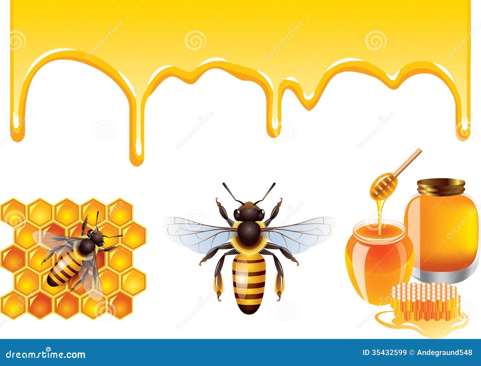 Honey, Bee, Honeycells Vector Set Royalty Free Stock ...