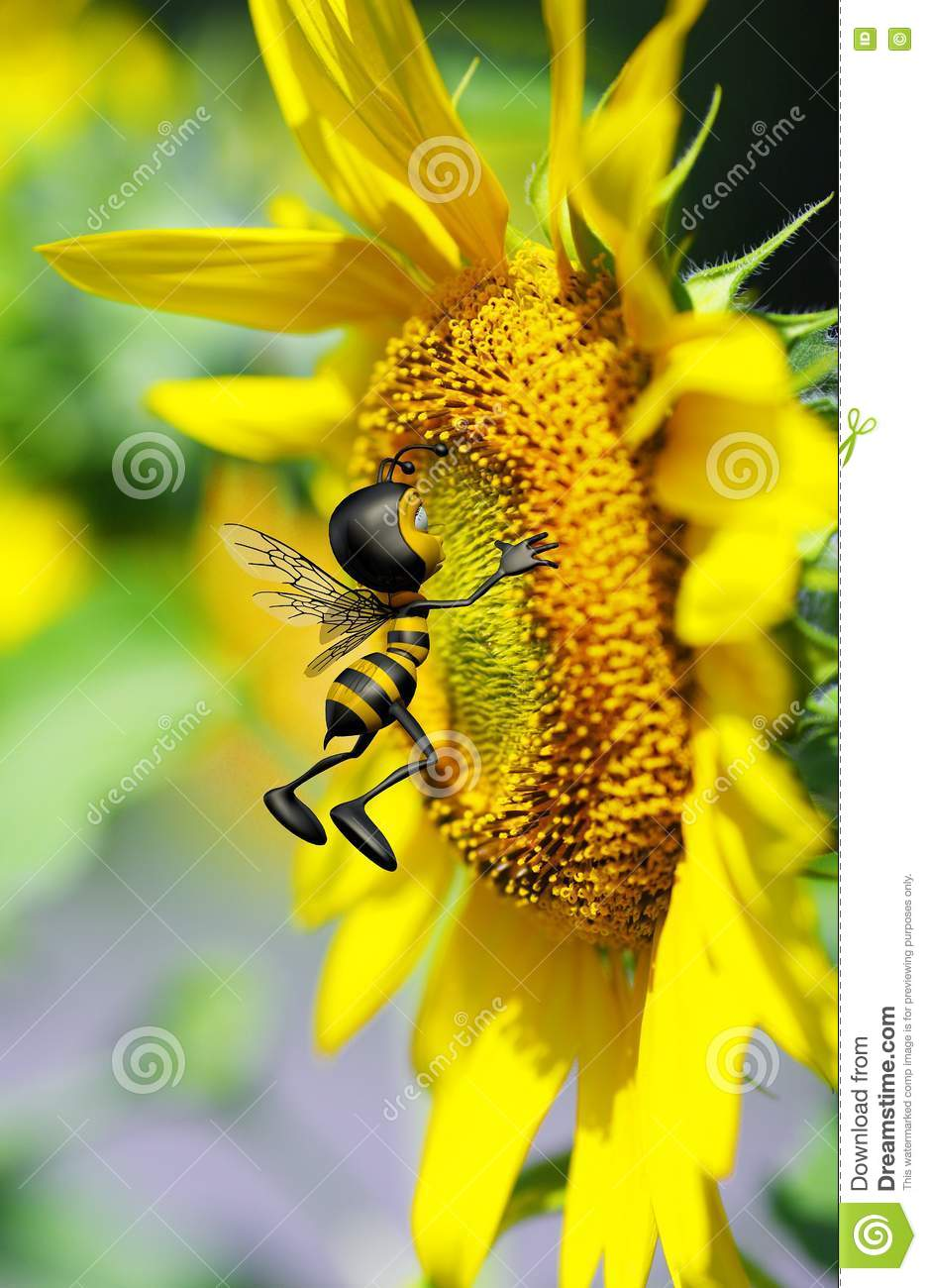 Honey Bee Kissing The Big Yellow Flower Royalty Free Stock Image ...