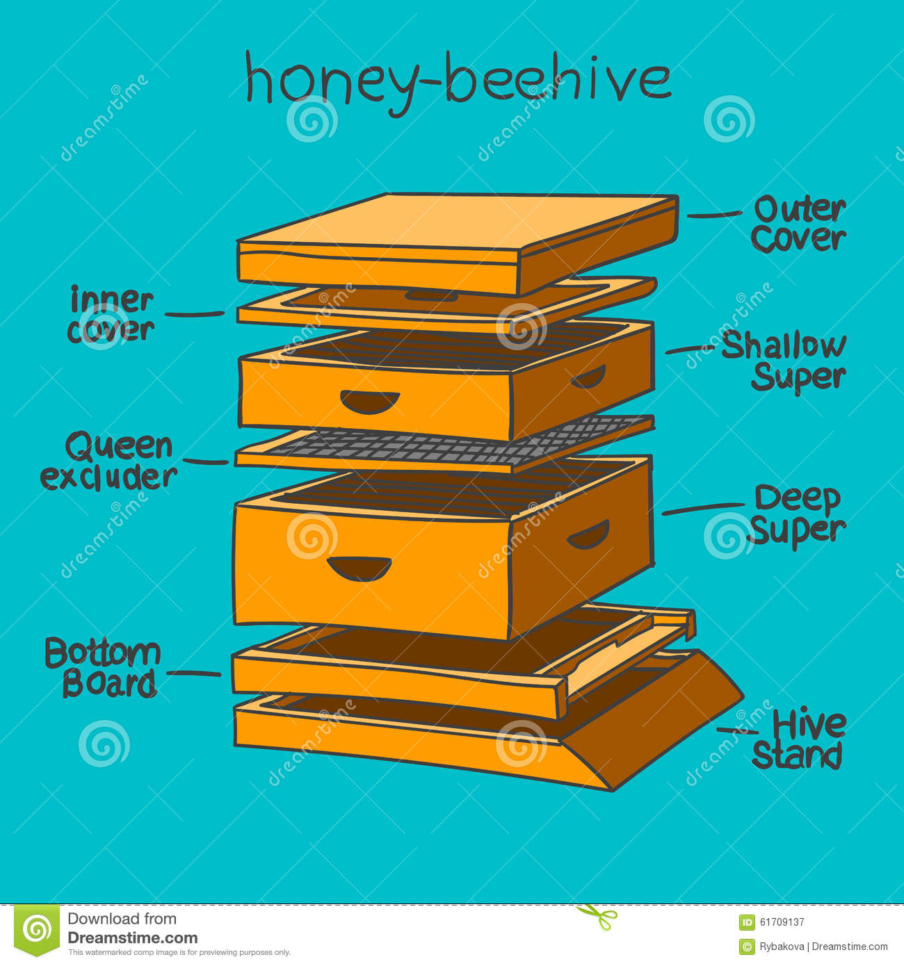 Beehive Colors Bee Hive Clipart School Pencil And In