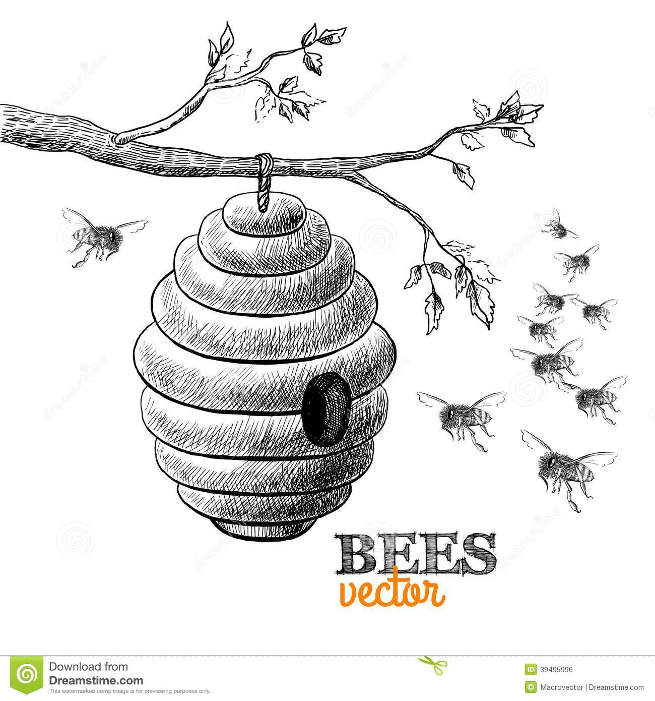 Honey Bees And Hive On Tree Branch Stock Vector - Image: 39495996