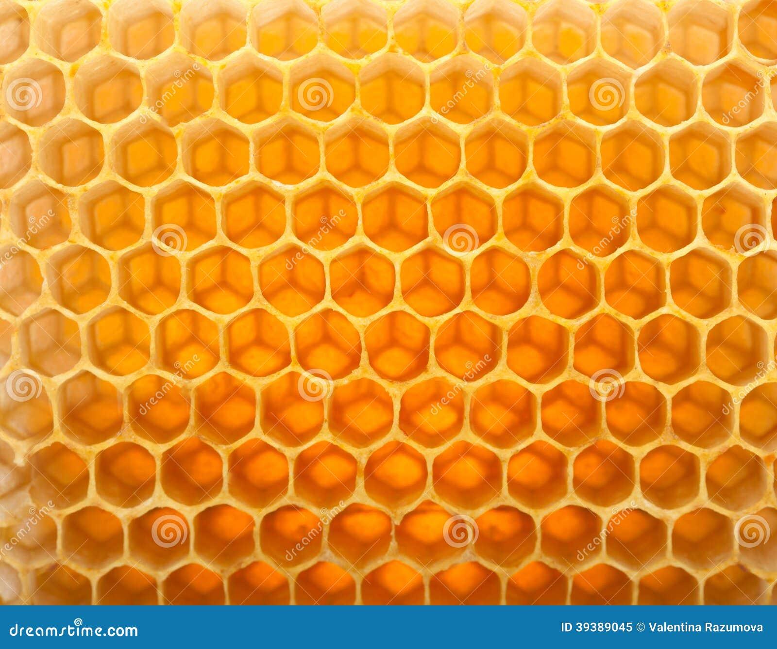Honey in comb
