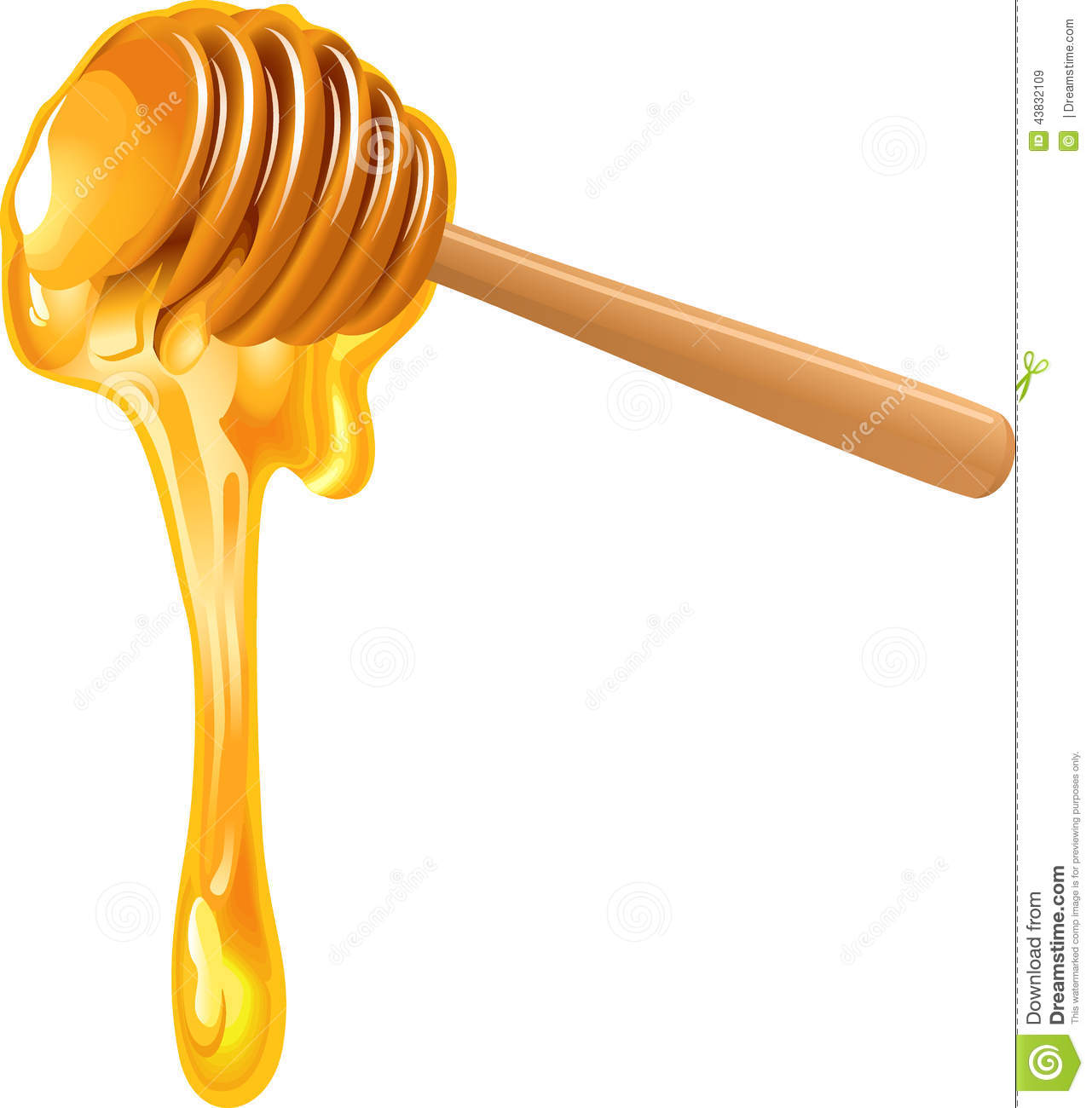Illustration of honey dipper isolated on white background.