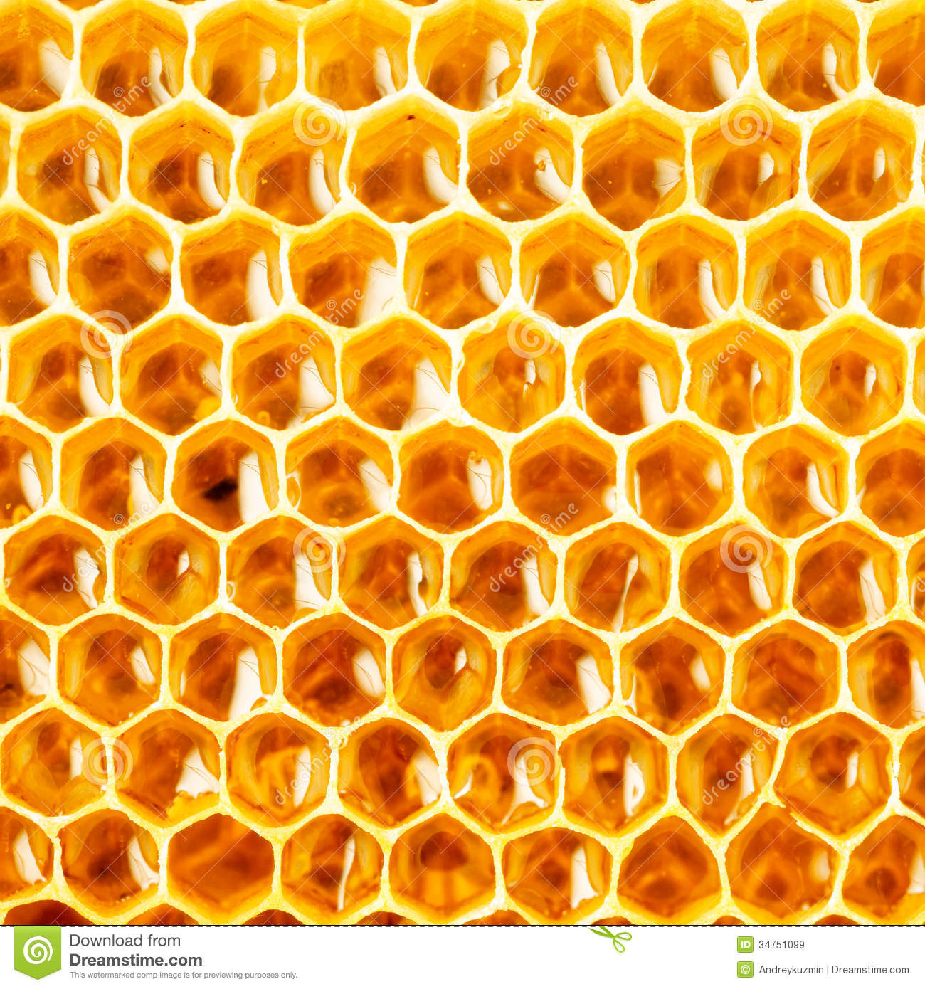 Honey In Honeycomb Closeup Royalty Free Stock Images - Image: 34751099
