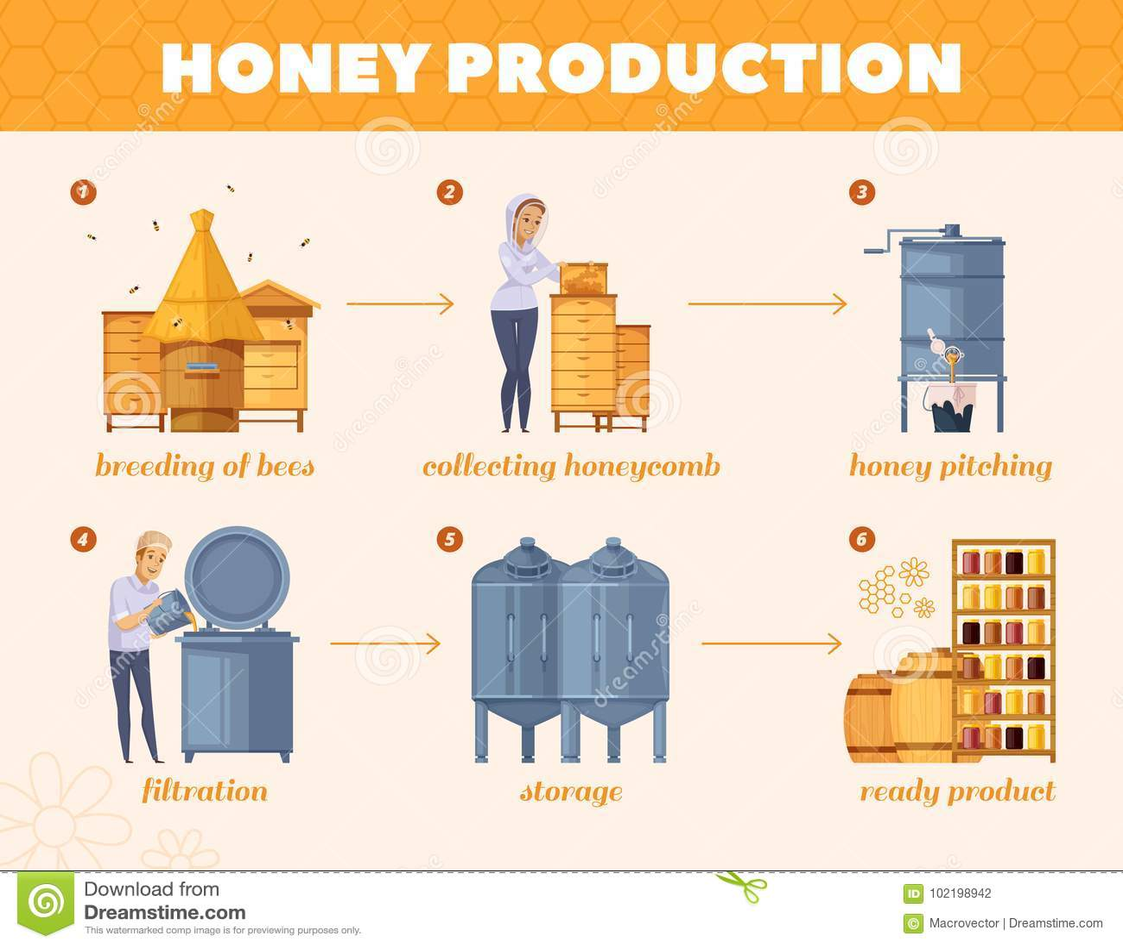 Honey Production Process Cartoon Flowchart