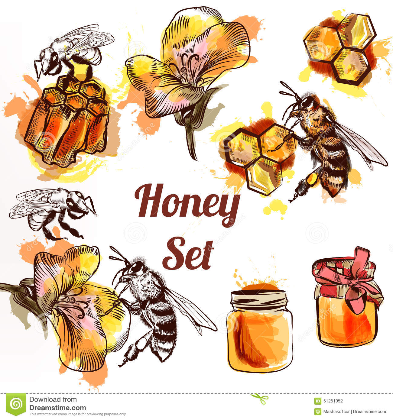 Honey set or collection elements bees comb and honey in waterco