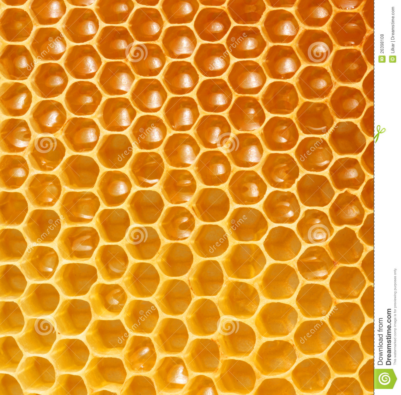 honeycomb background stock photo image of lifestyle free honey bee clipart images free honey bee clip art images