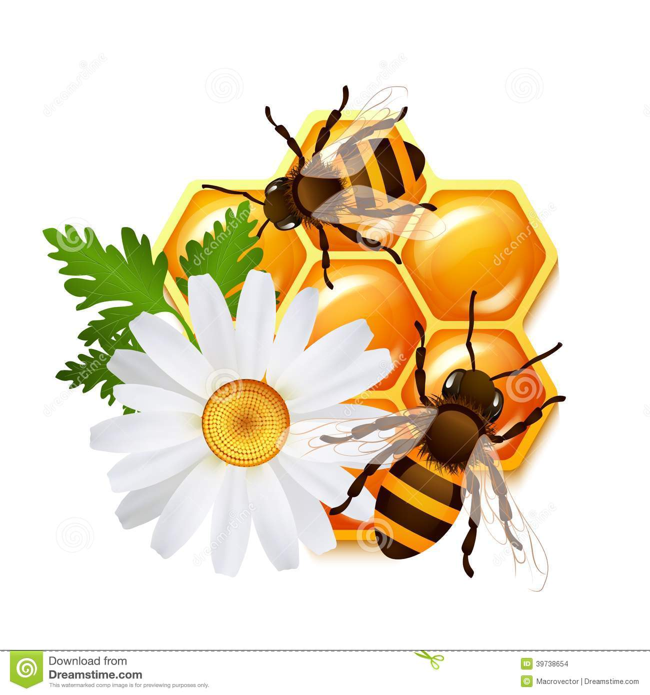 honeycomb bee flowers emblem stock vector image 39738654 honeycomb clipart awana honeycomb clipart awana