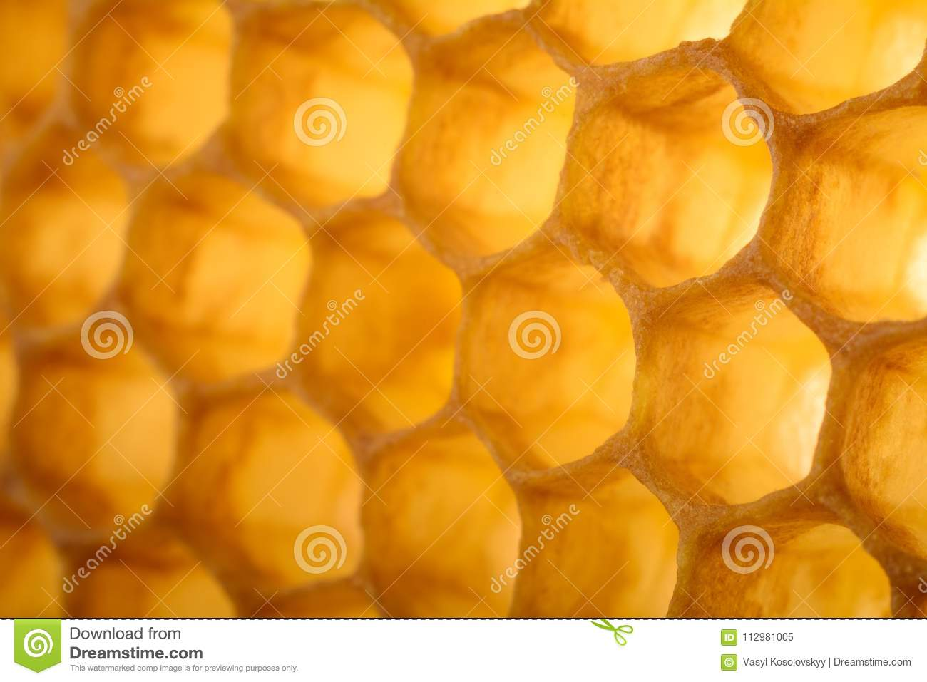 Honeycomb macro as a background. Beekeeping products. Apitherapy.