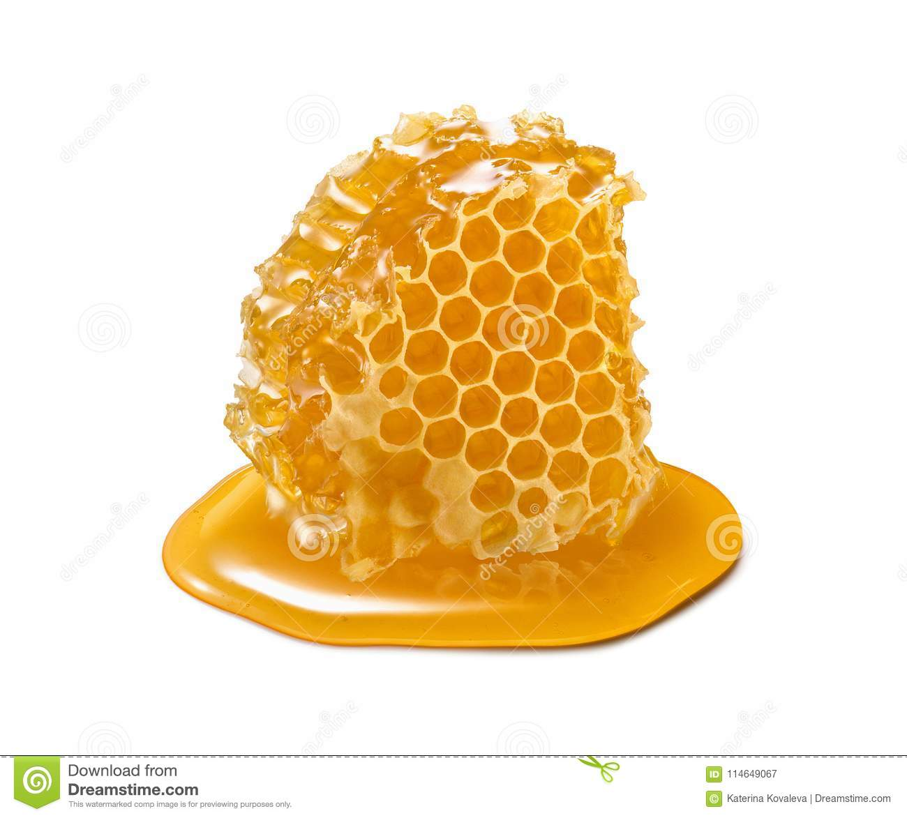 Honeycomb piece. Honey slice isolated on white background