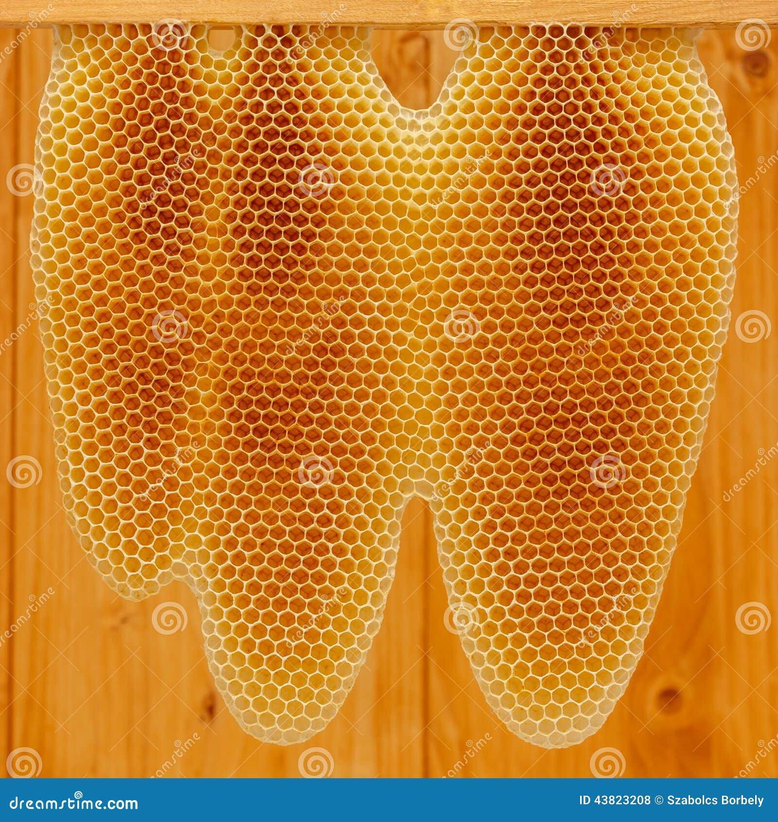 Honingraat op kader
