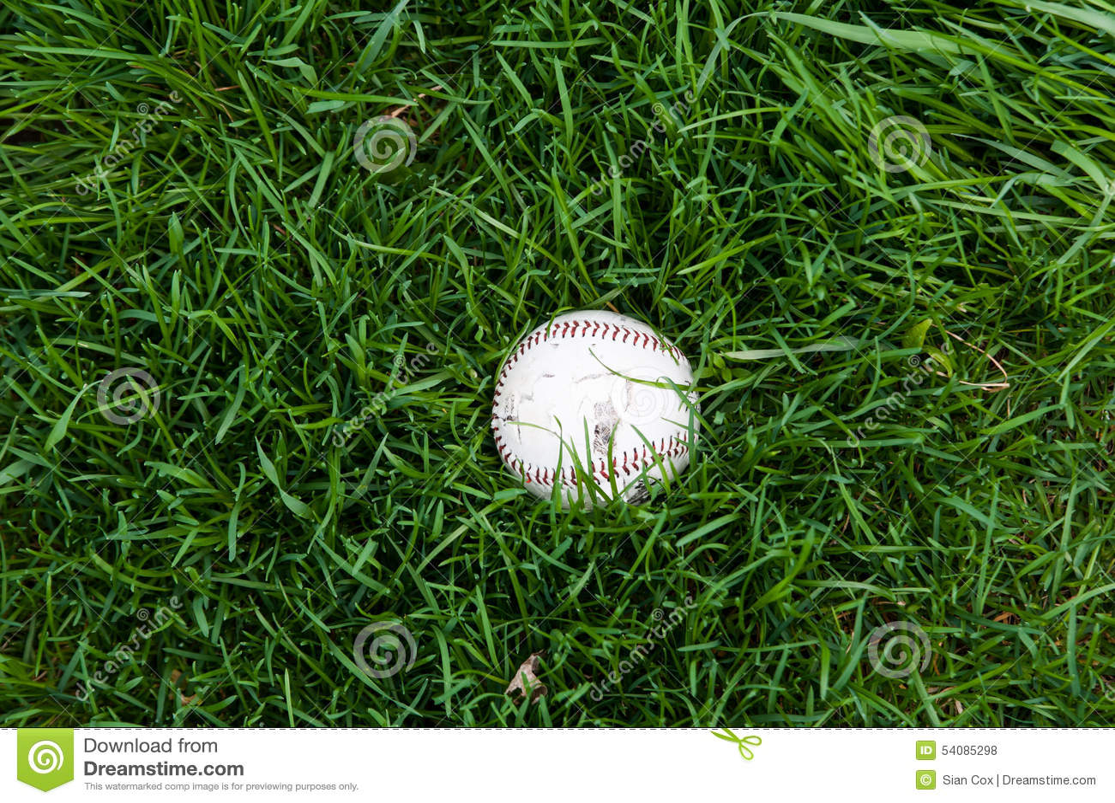 Honkbal in Gras