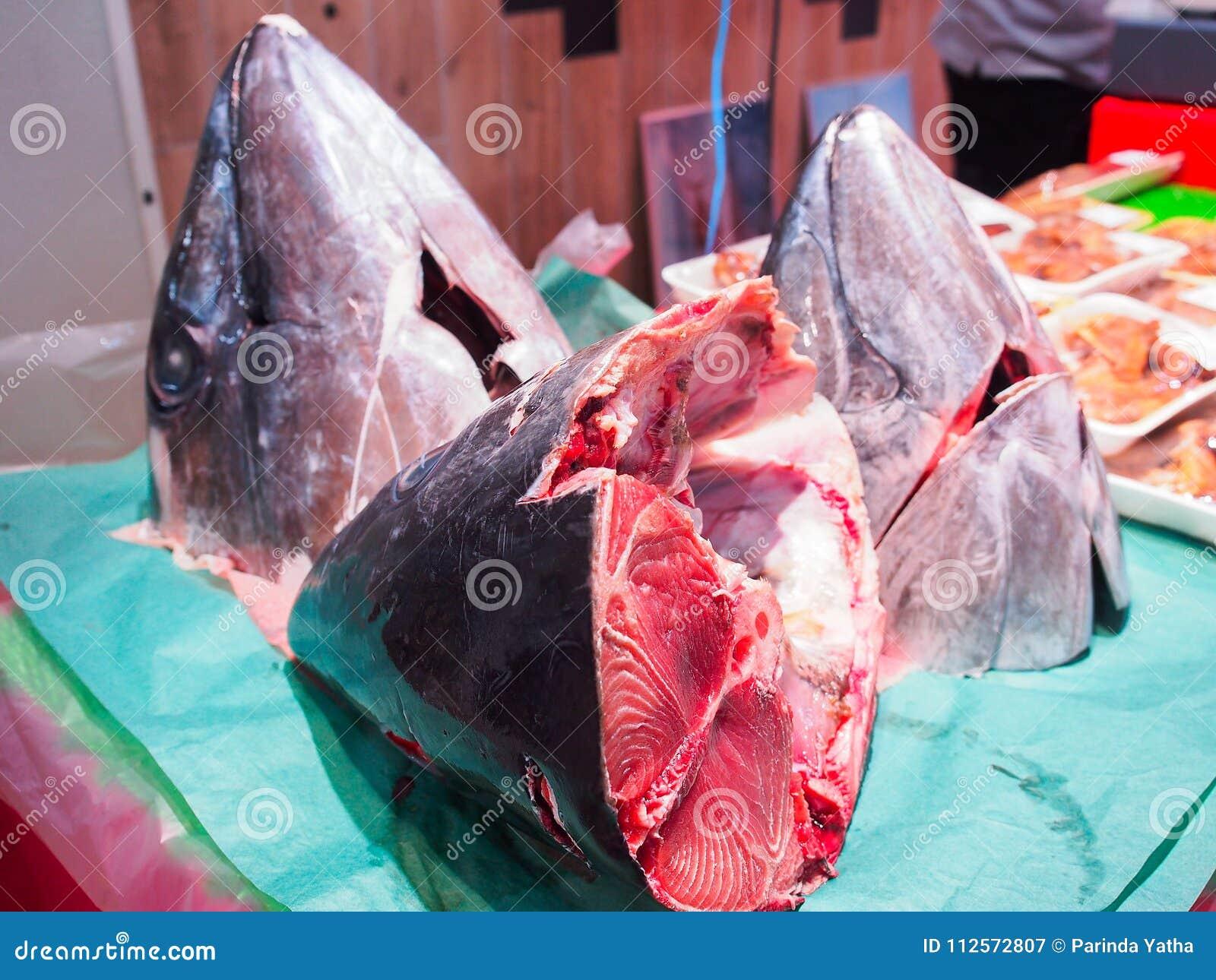 Hoofd van tonijnvissen