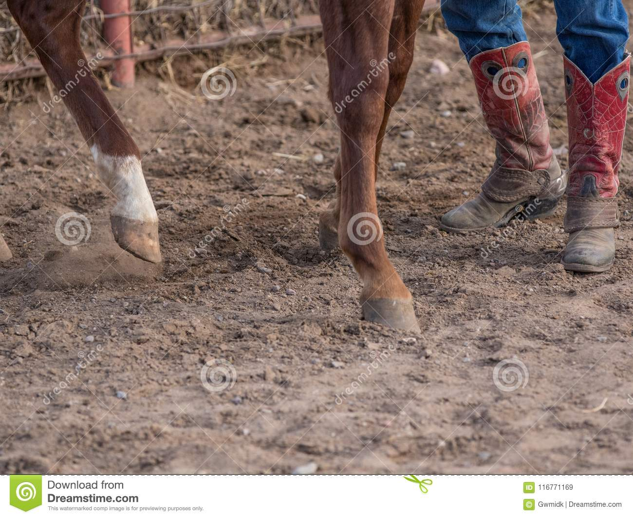 Hoofs and Boots