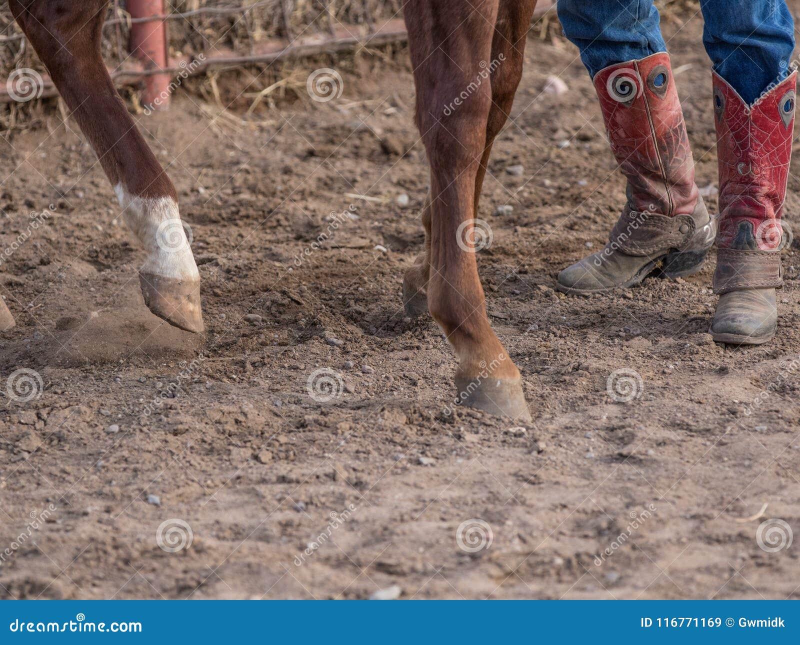 Hoofs i buty
