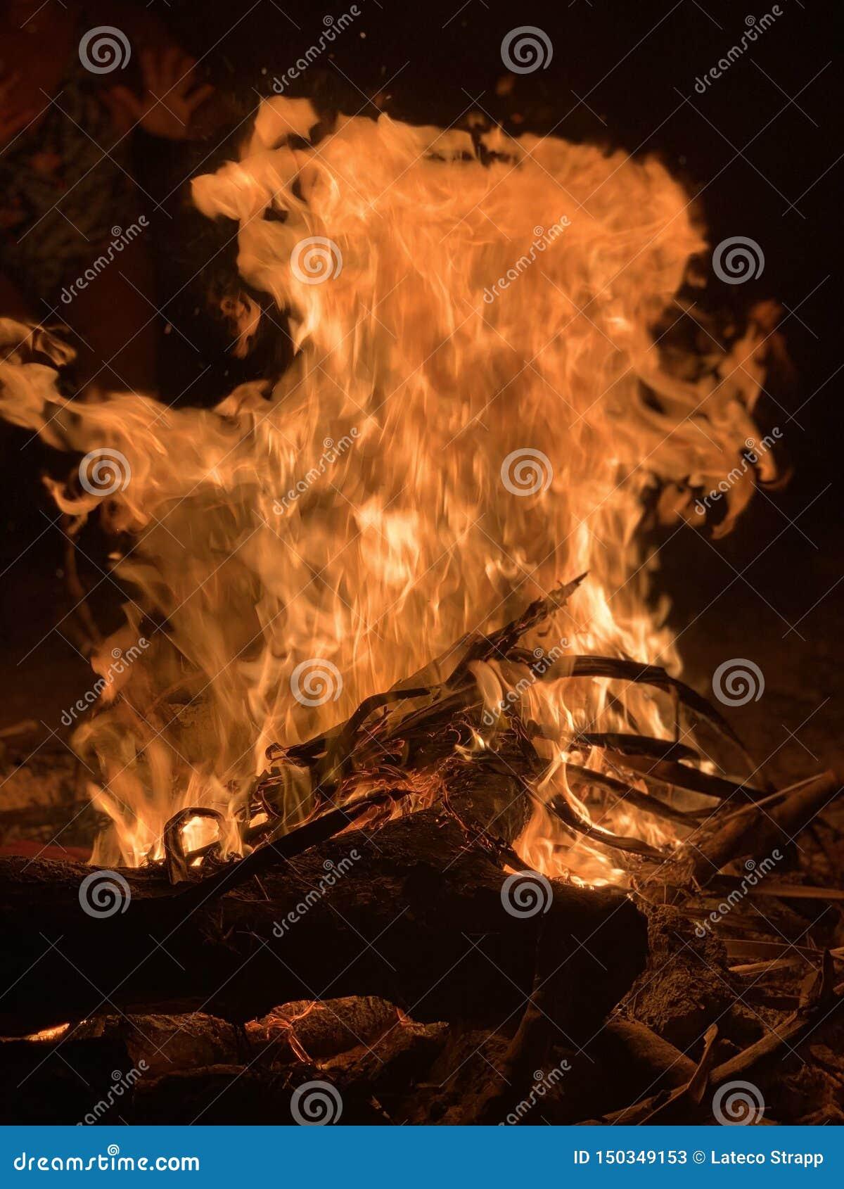 Hoog - de Brand van het kwaliteitskamp