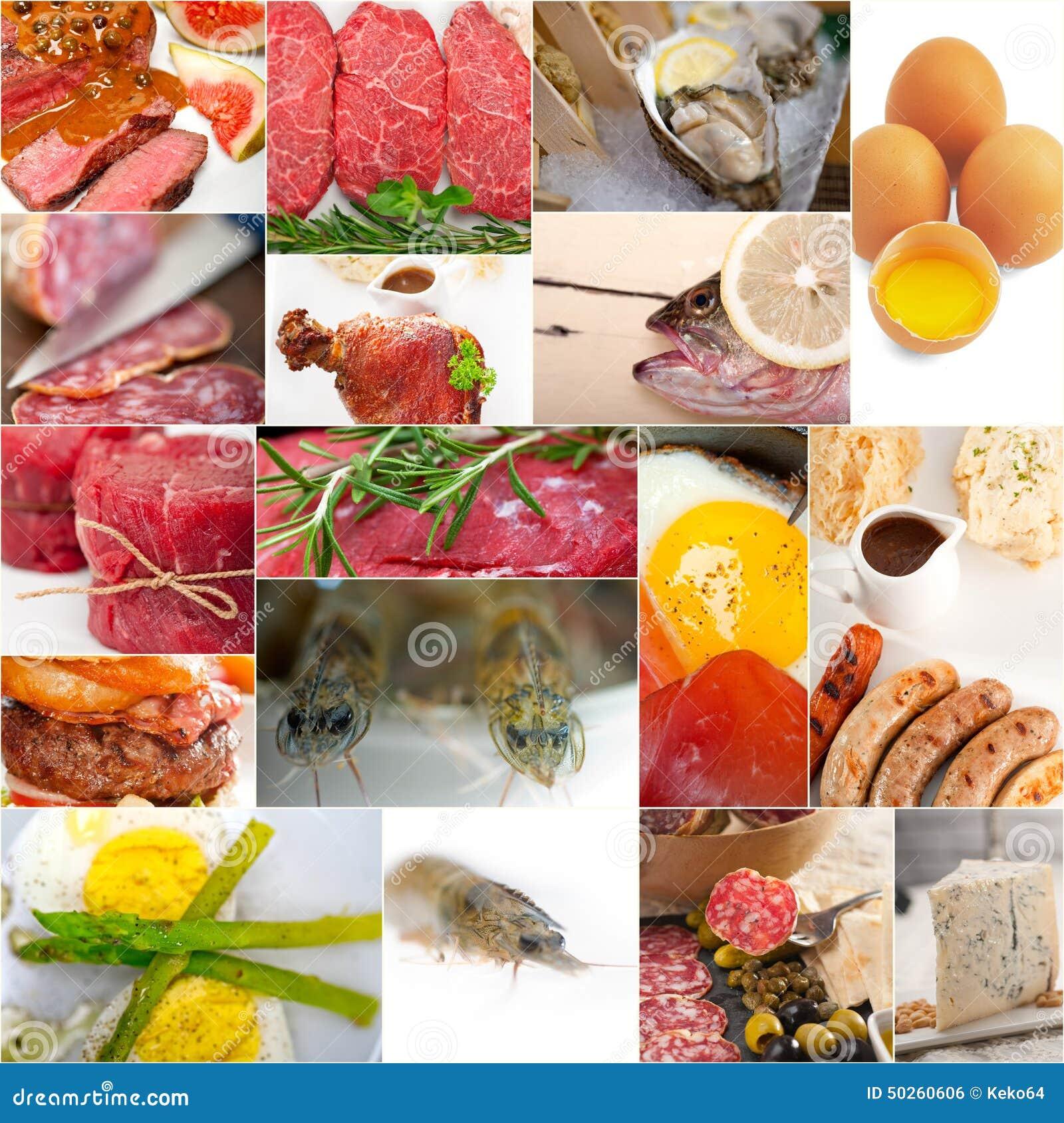 Hoog - de eiwitcollage van de voedselinzameling