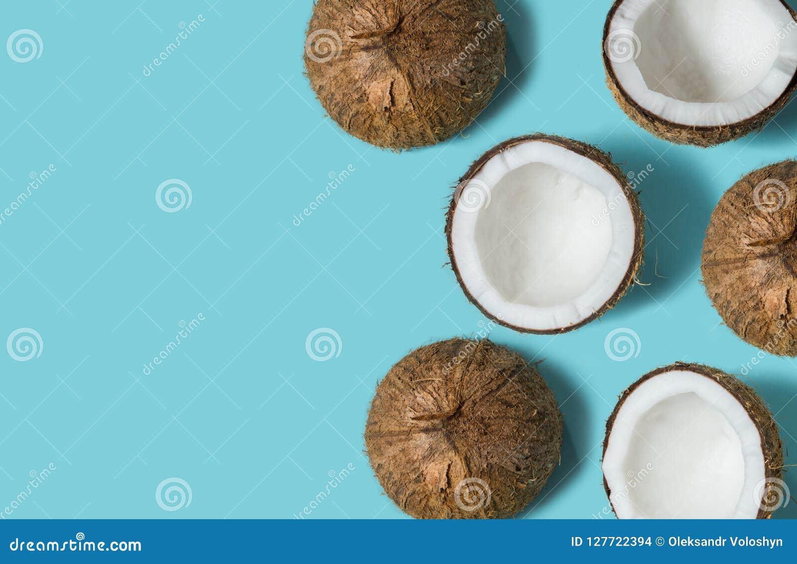 Hoogste die mening van kokosnoot op blauw achtergrond de Zomerconcept wordt geïsoleerd Vlak leg Patroon