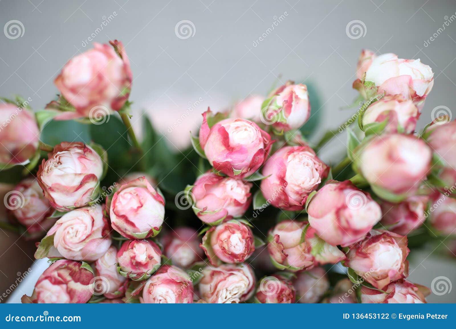 Hoogste mening over een bos van mini roze rozen, macro