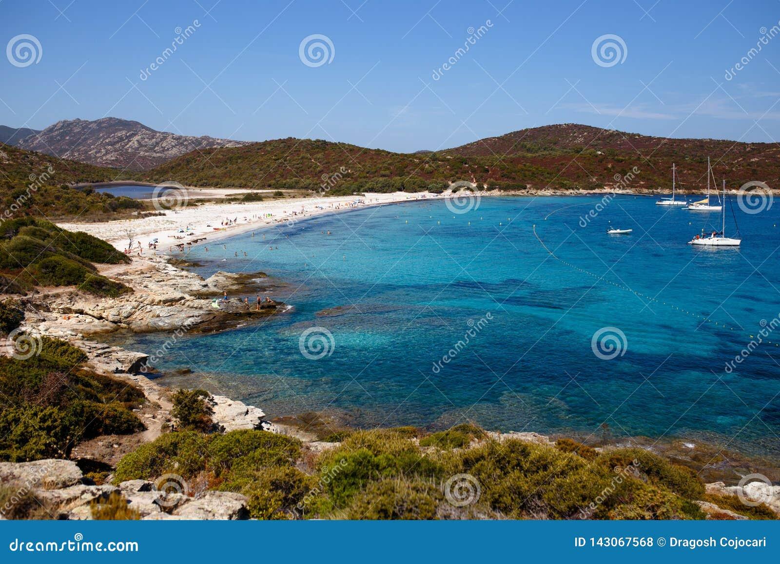 Hoogste mening van mooie aard van het eiland van Corsica, Frankrijk, de achtergrond van het bergenzeegezicht Horizontale mening