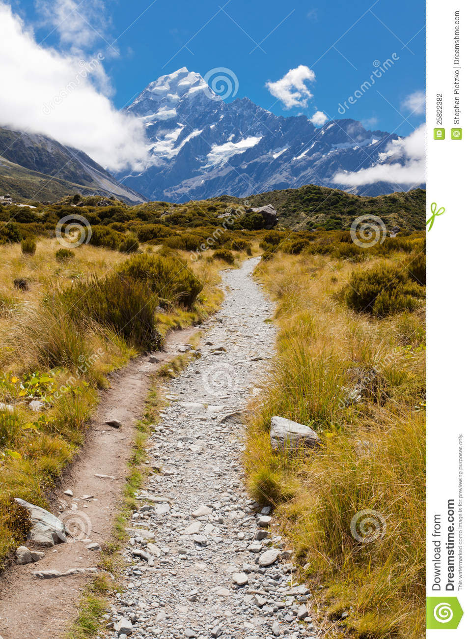 Valley with Aoraki Mt Cook Southern Alps NZ