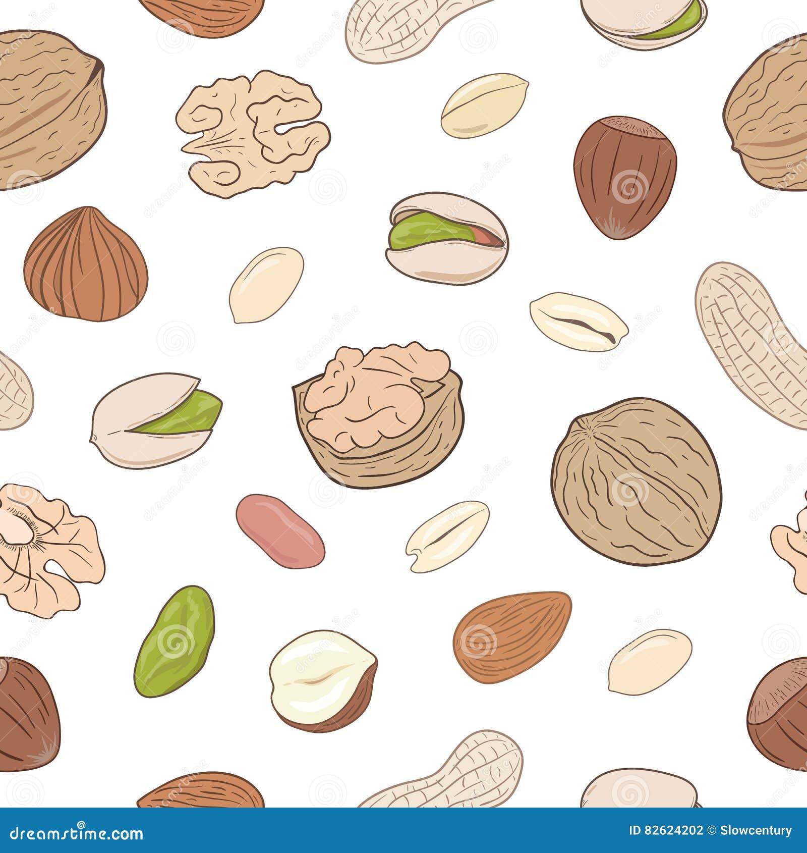 Hoop van geassorteerde noten Naadloos hand getrokken patroon