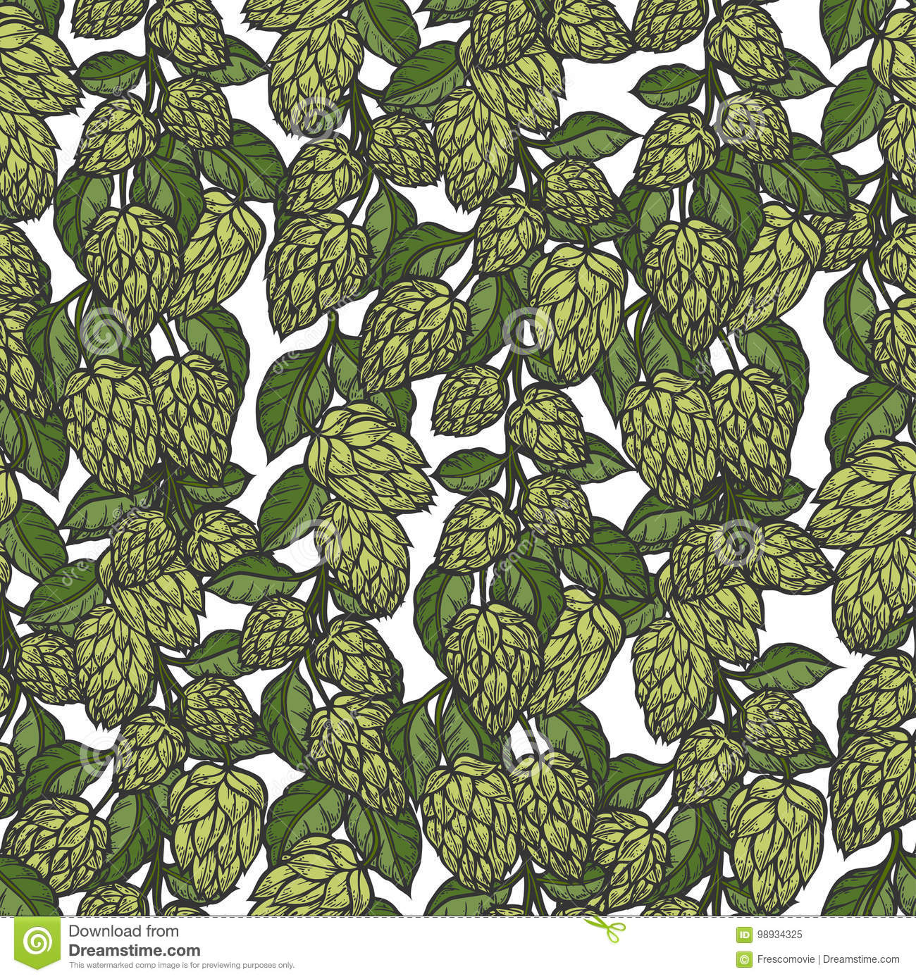 Hop Vector Seamless Pattern Stock Vector Illustration Of Drawn