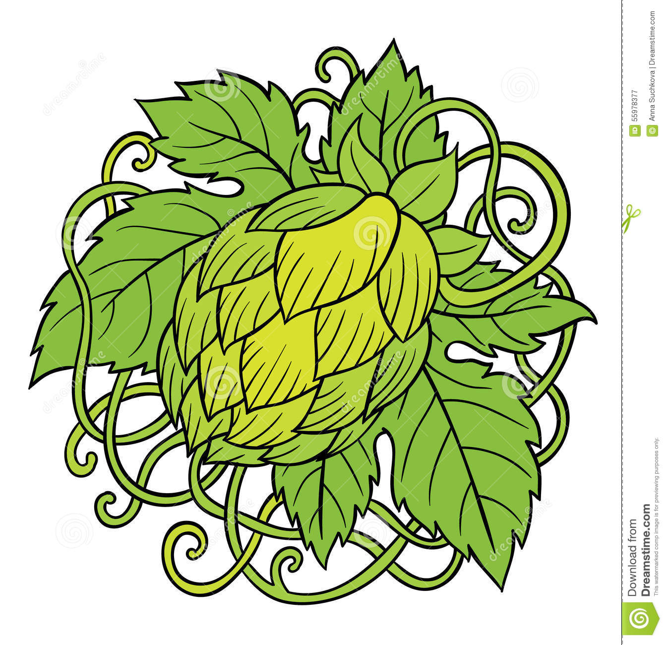 Stock Illustration Hops Vector Visual Graphic Icons Design Logos Ideal Beer Stout Ale Lager Bitter Labels Packaging Image55978377 besides Creating Garden Plan likewise Beautiful Diy Pallet Indoor Bar And Wine Rack additionally Amazing Home Interior Design Ideas moreover Flower Tire Planter Ideas. on design herb garden