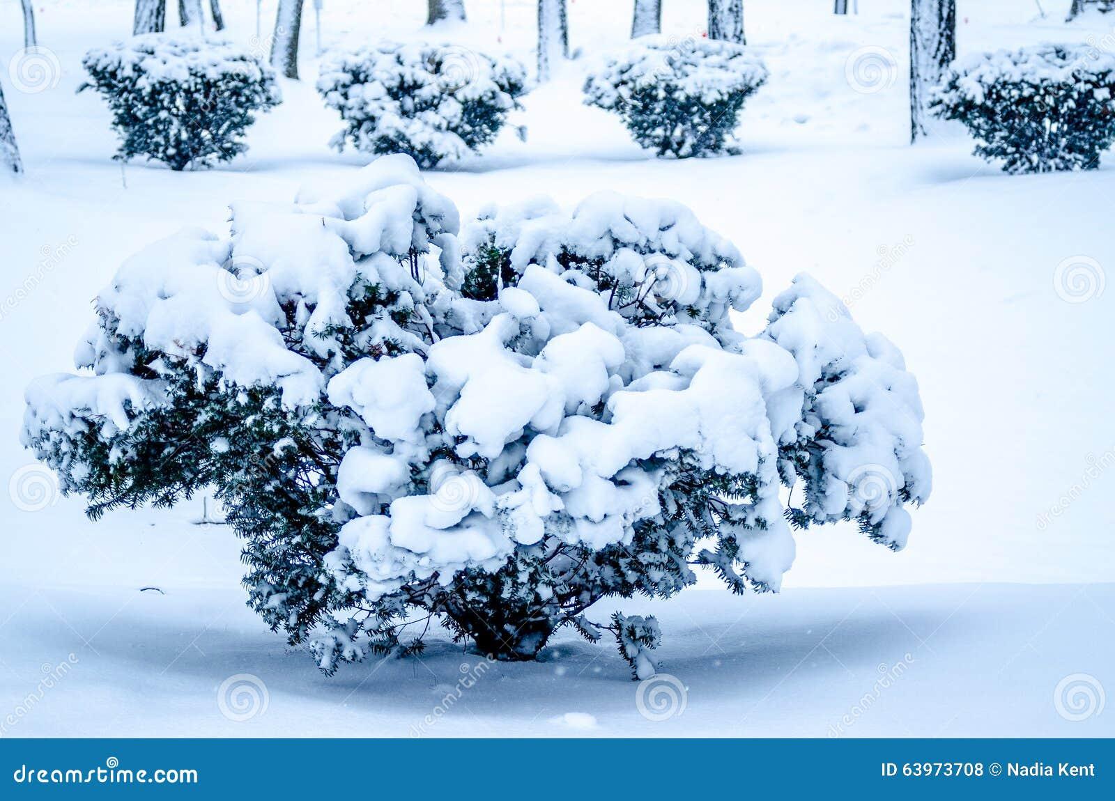 Horaire d 39 hiver temps d 39 amusement temps de neige - Ren des neige ...