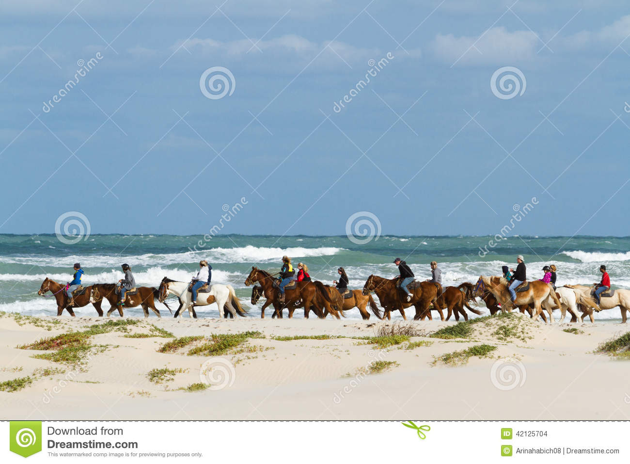 South Padre Island Riding Horses