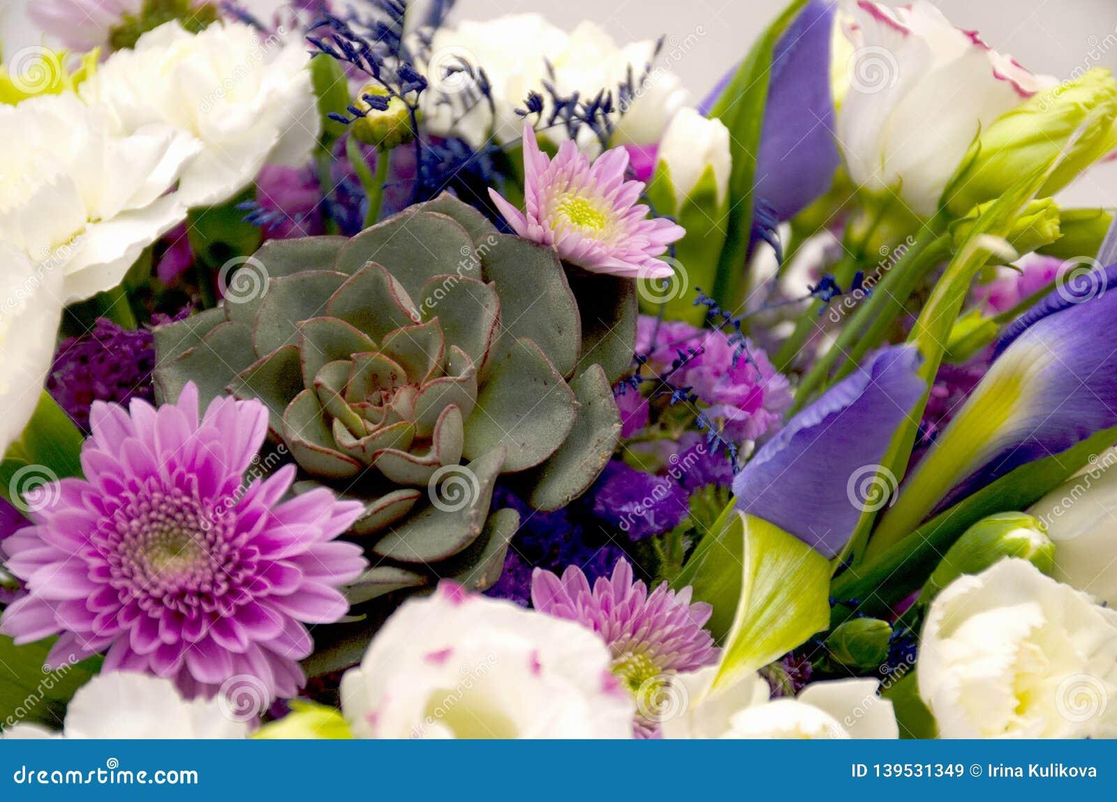 Horisontalbakgrund från en närbild av en vårbukett av blommor i lila och purpurfärgade färger
