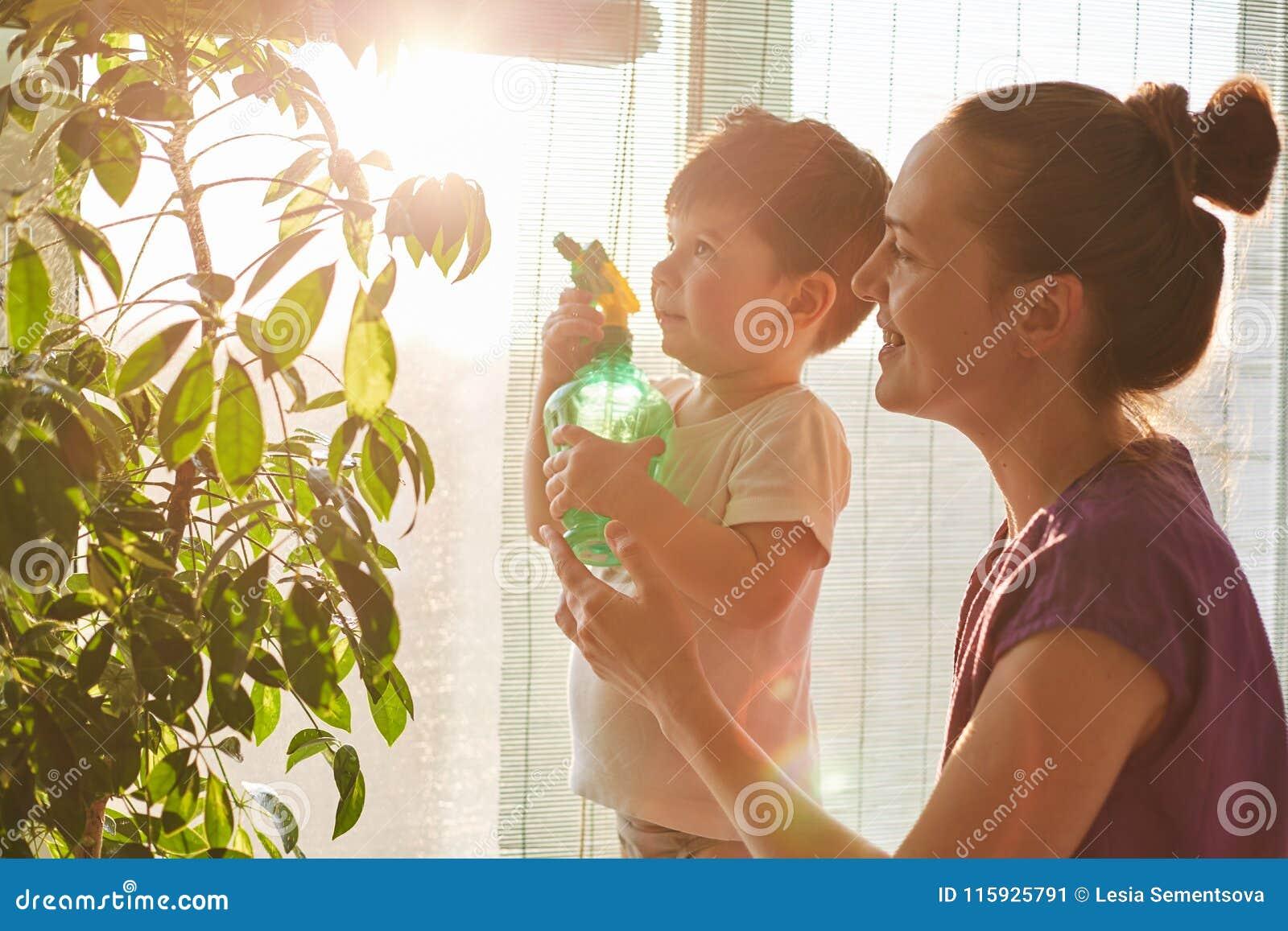 Horisontalskottet av stiligt litet gör ungehållpulverizeren, hjälpmoder för att bespruta och bevattna hemhjälpblommor, agai för s