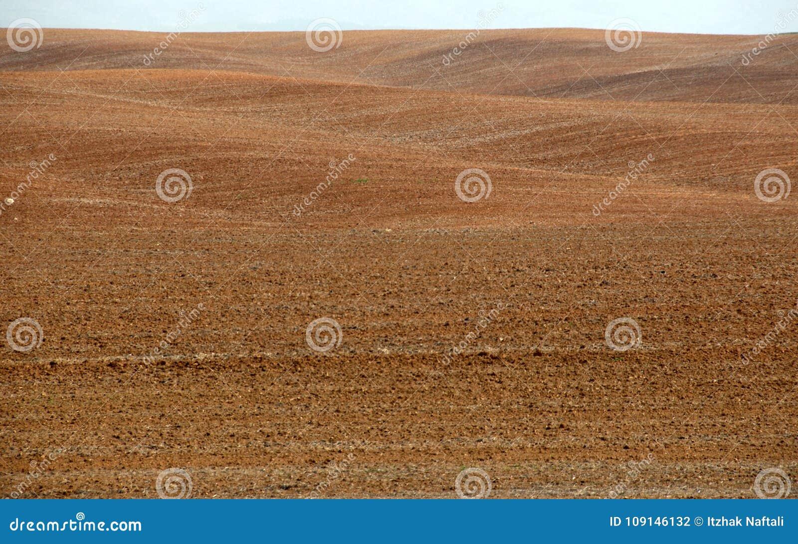 Horizon dans le désert