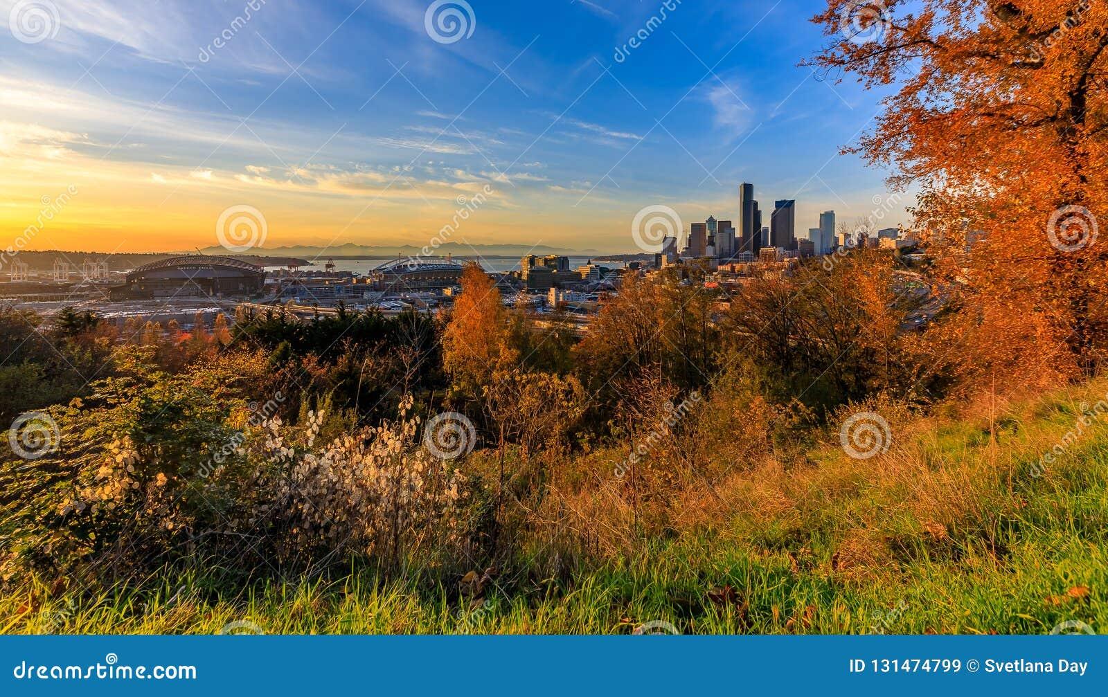 Horizon de Seattle au coucher du soleil en automne avec le feuillage jaune dans la vue de premier plan du Dr. Jose Rizal Park