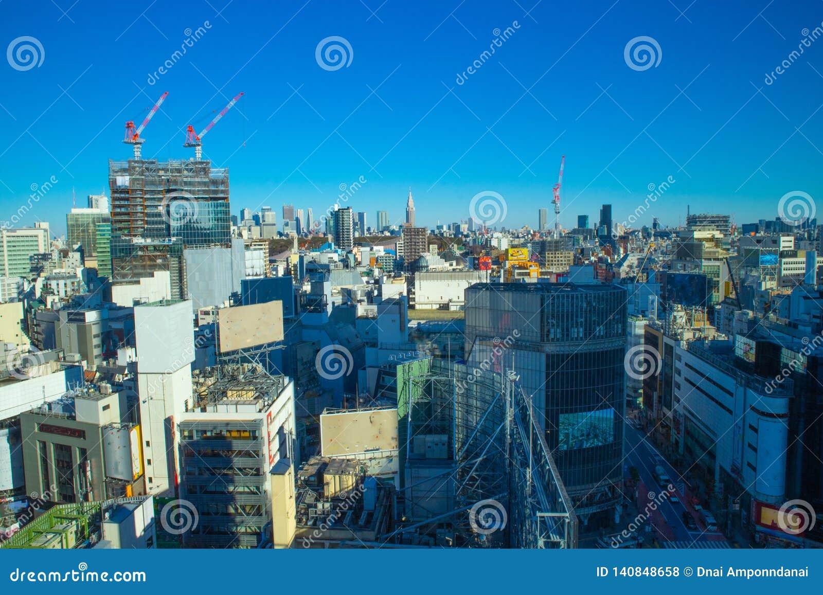 Horizon de Tokyo dans le beau jour
