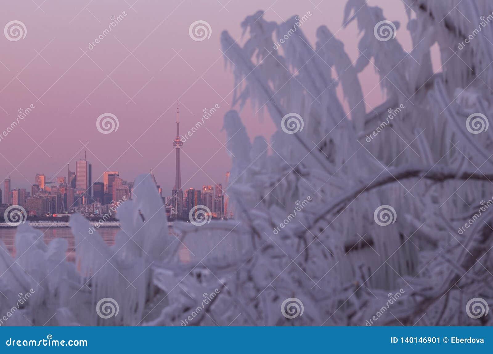 Horizon de ville de Toronto pendant le vortex polaire d hiver